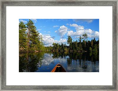 Quiet Paddle Framed Print by Larry Ricker