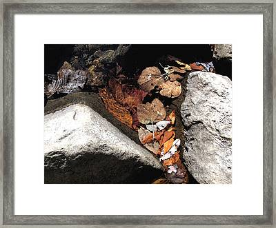 Quiet Pool At Richland Creek Framed Print by Steve Grisham