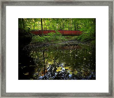 Framed Print featuring the photograph Quiet Reflections by Viviana  Nadowski
