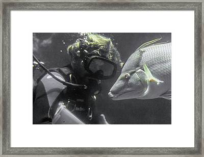 Quiet Spectacular Moment Framed Print