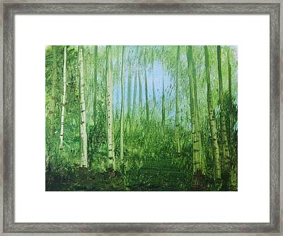 Quiet Stroll Framed Print by Trilby Cole