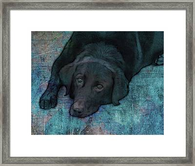 Quiet Time Framed Print by Ann Powell