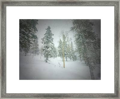 Quiet Turns  Framed Print by Mark Ross