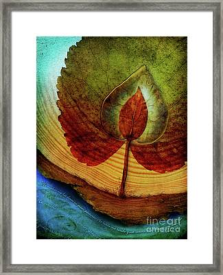 Quiet Waters Framed Print by Shevon Johnson