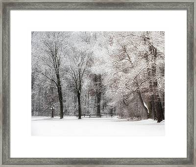 Quiet Winter  Framed Print