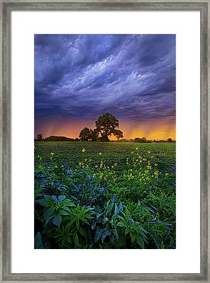 Quietly Drifting By Framed Print