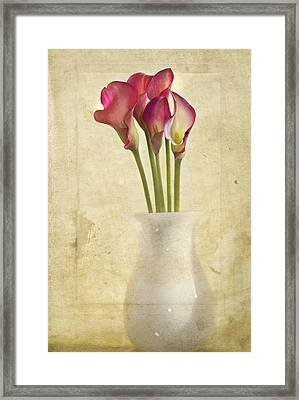 Quietly Framed Print by Rebecca Cozart