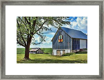 Quilt Barn - Nebraska - Forest For The Trees Framed Print by Nikolyn McDonald