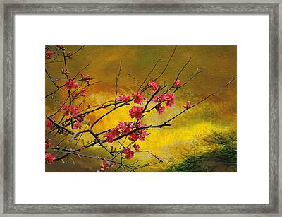 Quince And Spring In The Mountains Framed Print by Jeff Burgess