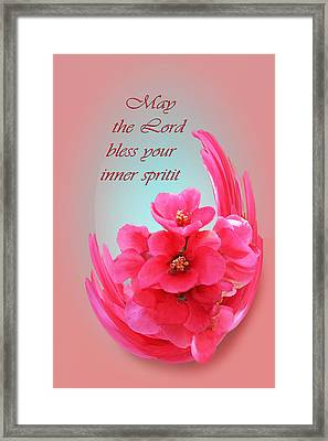 Quince Blossom Blessing Framed Print by Linda Phelps