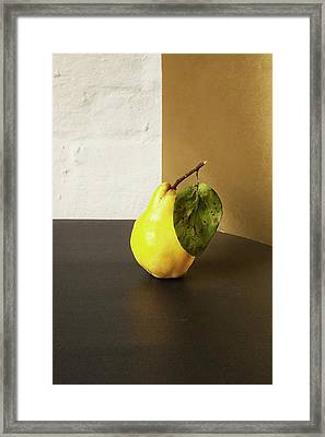 Quince Framed Print by Happy Home Artistry