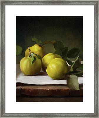 Quince Framed Print
