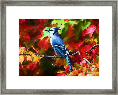 Quite Distinguished Framed Print by Tina LeCour