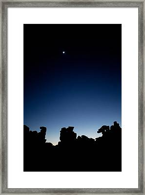 Quiver Tree Forest At Night, Namibia Framed Print