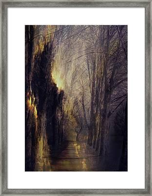Quo Vadis  -  Memory Lane Framed Print
