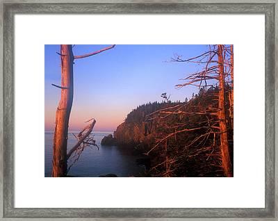 Quoddy Head Ocean Cliffs Framed Print by John Burk