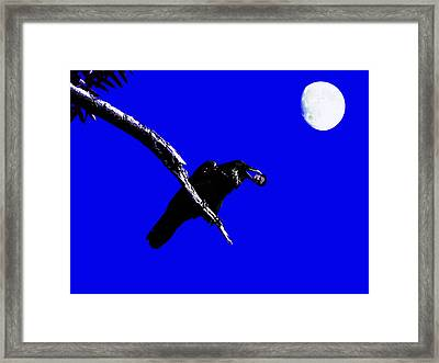 Quoth The Raven Nevermore . Blue Framed Print by Wingsdomain Art and Photography