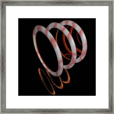R 018 D Framed Print
