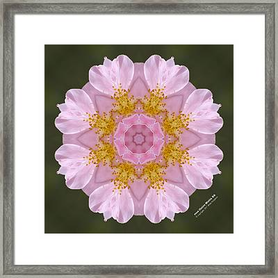 r. 'Claire Matin' 72164k8 Framed Print by Brian Gryphon