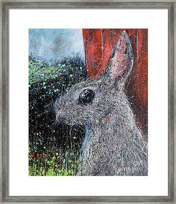 Rabbit And Barn Framed Print by Michael Glass