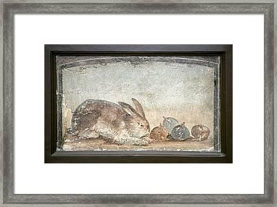 Rabbit And Figs, Roman Fresco Framed Print