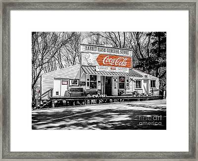 Rabbit Hash Store-front View Sc Framed Print