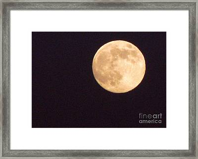 Framed Print featuring the photograph Rabbit In The Moon by Phyllis Kaltenbach