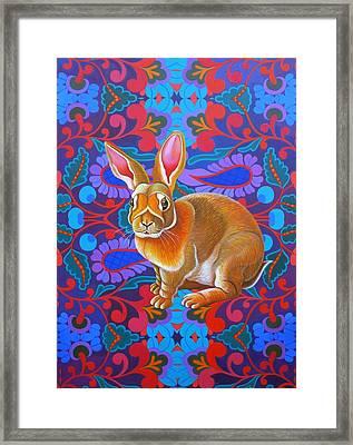 Rabbit Framed Print by Jane Tattersfield