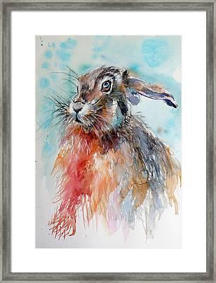 Rabbit Framed Print by Kovacs Anna Brigitta