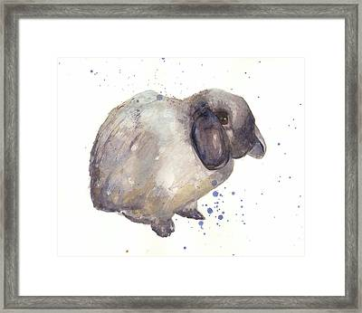 Rabbit Print Framed Print by Alison Fennell