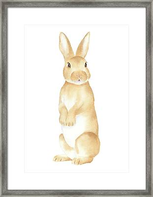 Framed Print featuring the painting Rabbit Watercolor by Taylan Apukovska