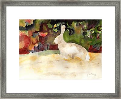 Rabbit We Saw On Our Walk Framed Print
