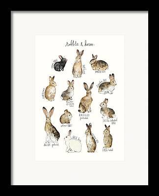 Charts Framed Prints