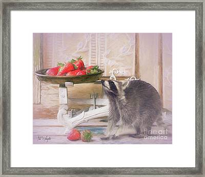 Raccoon And Strawberries Framed Print by Tim Wemple