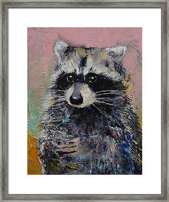 Raccoon Framed Print by Michael Creese