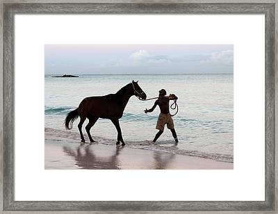 Race Horse And Groom 1 Framed Print by Barbara Marcus