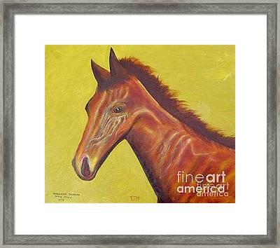 Race Horse Portrait - American Pharoah Framed Print