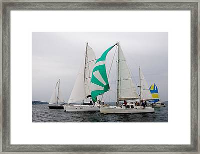 Race In The Mist Framed Print by Tom Dowd