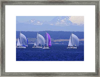 Race Week 2006 Bo1091 Framed Print by Mary Gaines