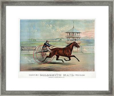 Racehorse: Goldsmith Maid Framed Print by Granger