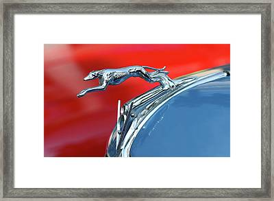 Racer Framed Print by Rebecca Cozart