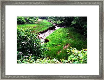 Rachel Carson National Wildlife Refuge Framed Print by Thomas R Fletcher