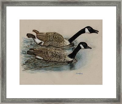 Racing Geese Framed Print by Cynthia  Lanka