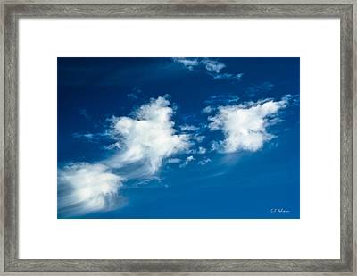 Racing Star Framed Print by Christopher Holmes