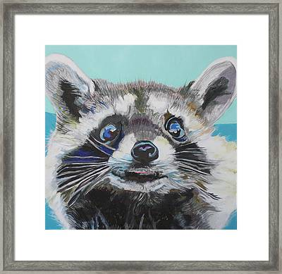 Racoon Framed Print by Jamie Downs