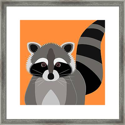 Raccoon Mischief Framed Print by Antique Images
