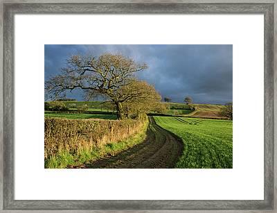 Raddon Top In Mid Devon Framed Print