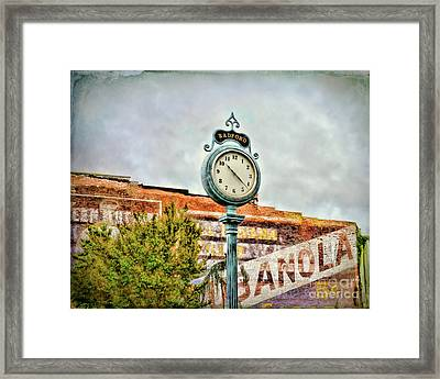 Radford Virginia - Time For A Visit Framed Print