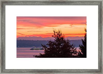 Radiance At Sunrise Framed Print
