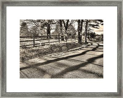 Framed Print featuring the photograph Radiance by Betsy Zimmerli